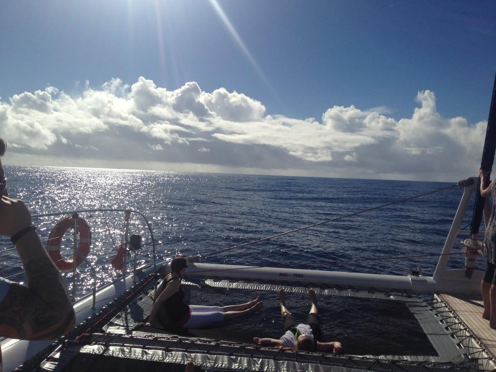 Schiffsfahrt mit Walsichtung