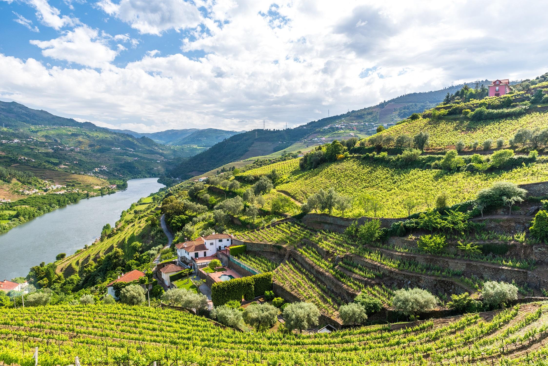 Rio Douro in Portugal